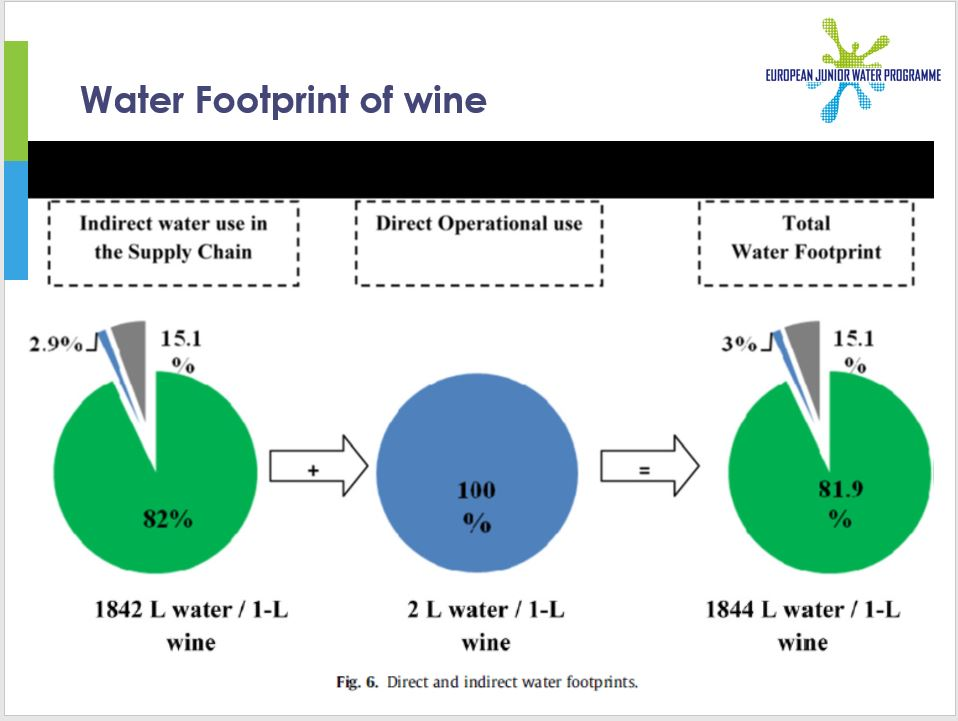 Project results: Water Use Awareness among European Wine Producers